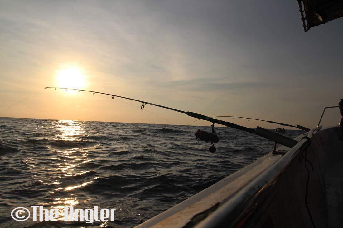 The Angler, The Angler Magazine, The Angler Asia, The Asian Publisher, The Asian Angler, ASEAN Publisher, Angler Magazine,