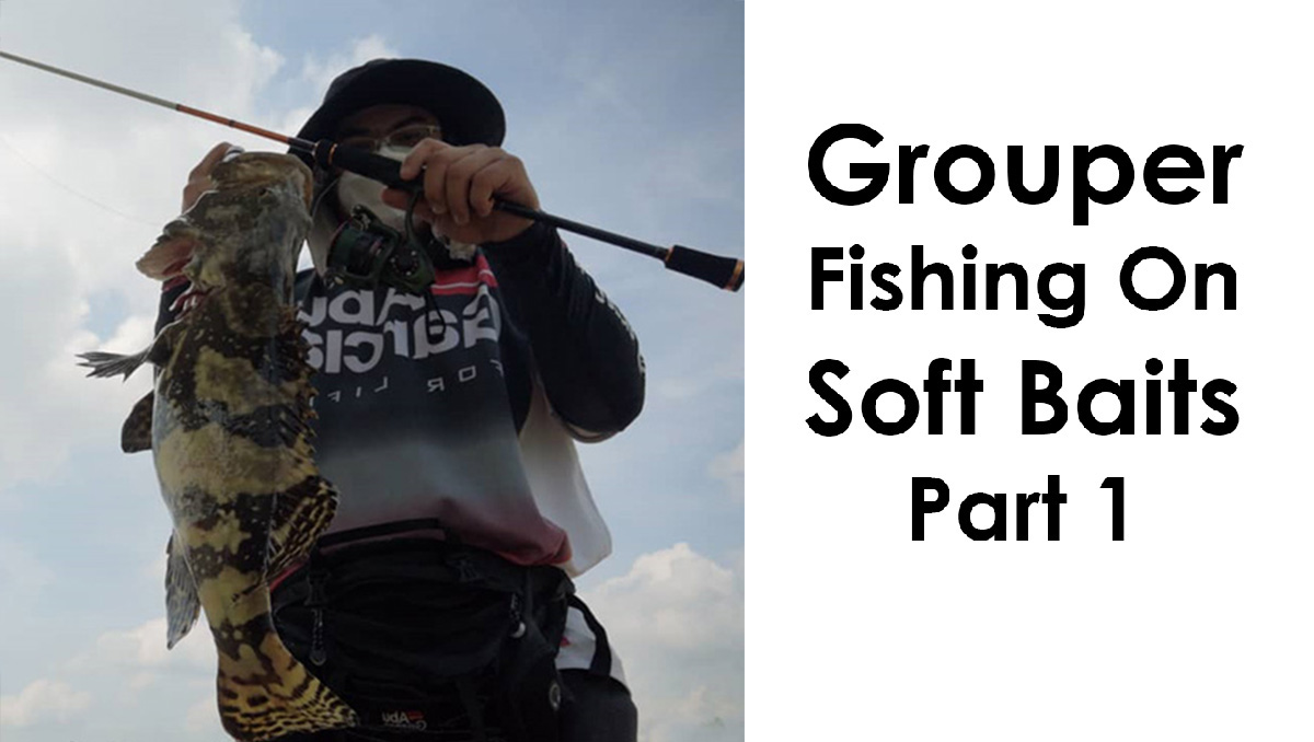Fishing groupers, how to fish groupers, fishing for groupers, grouper fish, do groupers take soft baits, do groupers take lures, tips on fishing groupers, fishing tips, grouper fishing tips, fishing groupers with soft baits, how to use soft baits, soft baits fishing tips, soft plastic fishing tips, soft plastic lure tips,