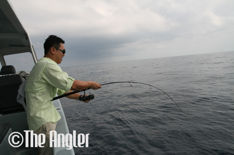 fishing rod info, understanding fishing rods, fishing rod power, fishing rod backbone, fishing rod review, how to choose a fishing rod, how to fight a fish, big game fishing tips, how to fight big game fish, how to fight big fish