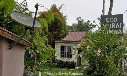 Escapy Travel magazine, Escapy, Escapy Travel, eco resort, where to stay in Selangor, nature resort in Selangor, nature resort Selangor, Eco Murai Rimba, back to nature in Selangor, where to stay in Selangor, Selangor nature resorts, streams and rivers Selangor, fun things in selangor, recommended places to stay in Selangor, fun in Selangor, nature resorts,