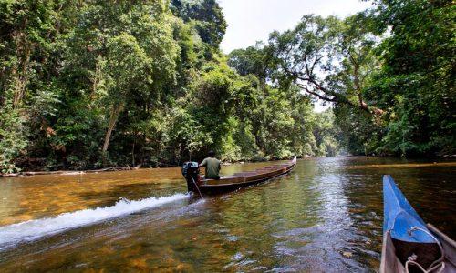 Mutiara-Taman-Negara---Tahan-River