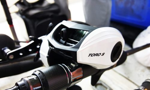 Fishing malaysia, baitcasting techniques, how to cast a baitcasting reel, how to baitcast, how to use a low profile reel, how to do baitcasting, baitcasting methods,