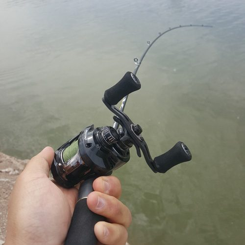the angler, the angler magazine, sight fishing, sight casting, fishing in the wild, wild fishing, fishing Malaysia, fishing Singapore, where to fish in Malaysia, where to fish in Singapore