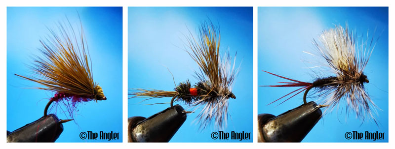 The Angler Magazine, The Angler, The Asian Angler, Berkley fishing, fly fishing, casting a fly, fly casting, fishing tips, how to cast flies, fly cast, casting flies, how to fly fish, types of flies, types of flies for fly fishing, dry flies, dry fly