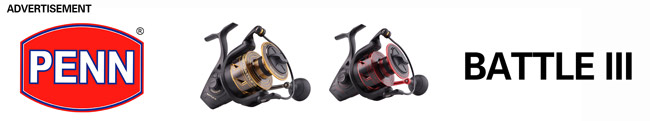 Penn Battle 3, penn fishing, penn fishing reel, penn battle, penn battle spinning reels, penn battle 3 spinning reels, penn reels, penn battle reels