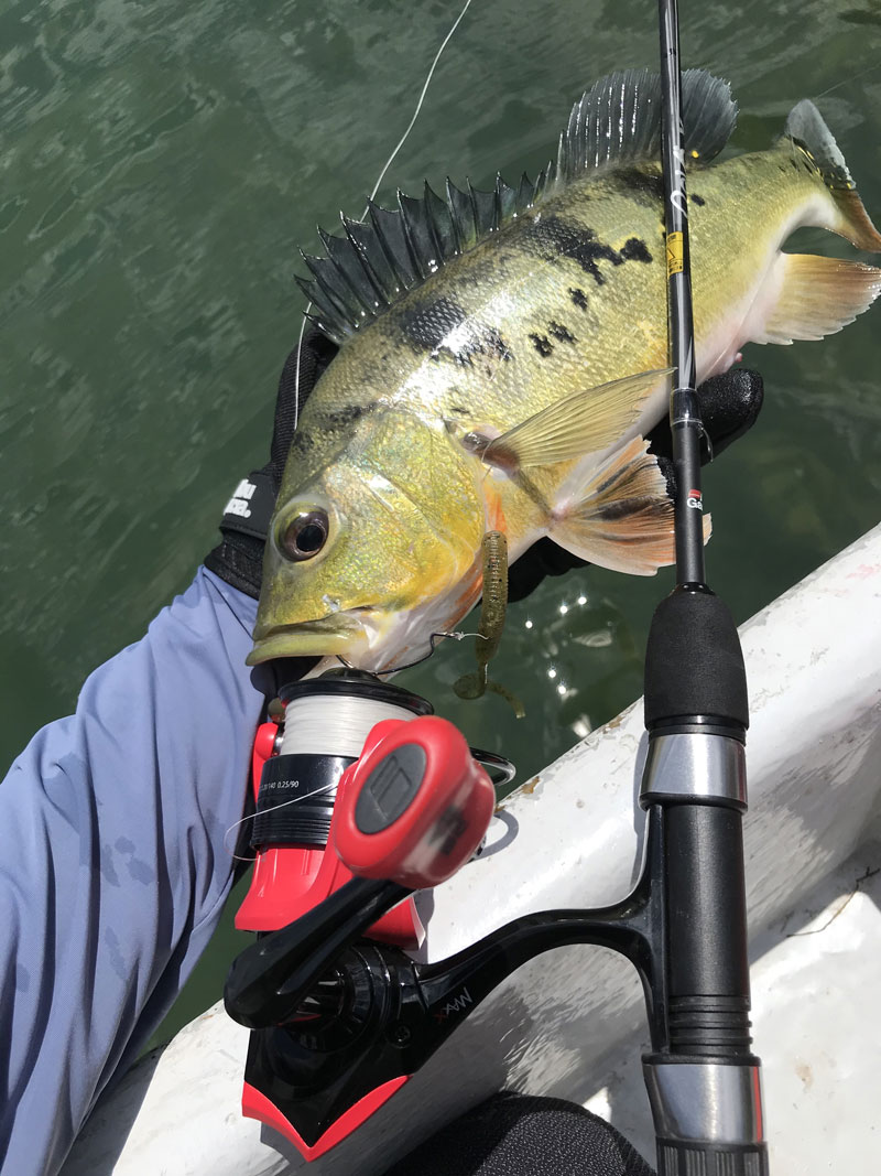 worming, how to worm, worming fun, fishing tips, fishing with worms, abu garcia max x, abu garcia max x spinning reel, fishing fun, the angler