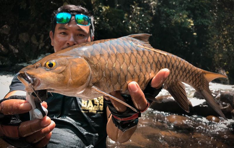 the angler magazine, the angler mag, the angler, the angler asia, The Asian Angler, Asian Angler, angling magazine, fishing magazines malaysia, malaysia fishing magazine, fishing in Sabah, tagging fish, fishing in Kiulu Sabah, fishing in Kiulu, fishing programs, fish conservation,