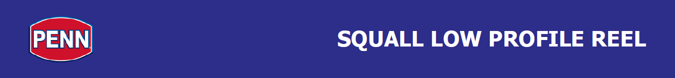 Penn Squall reel, Penn squall low profile, penn squall low profile baitcasting reel, penn low profile reels, penn baitcasting reels